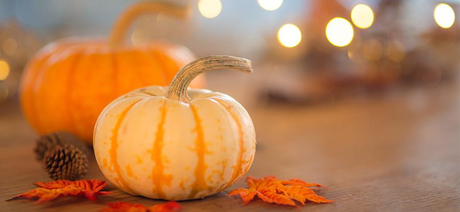 9月は決算期、10月はハロウィン効果!?秋に実践したい、株主優待の戦略2018